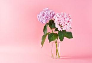 Erre a helyre SOHA ne tegyük a virágokkal teli vázát