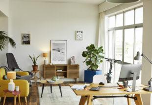 A frissesség jegyében – 6 növény, amely tisztítja otthonod levegőjét