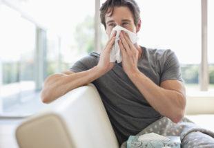 Porallergiás vagy? A következő tippek garantáltan megszabadítanak az állandó tüsszögéstől