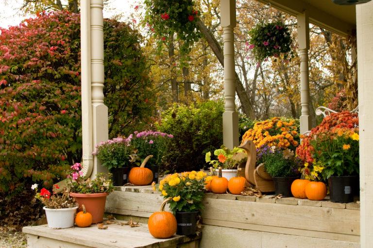 6 trendi őszi terasz dekoráció – Így teremts autentikus hangulatot már a bejáratnál