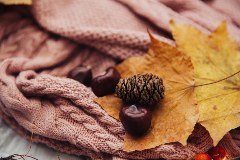 Őszi dekorációk gesztenyéből – 5 csodás őszcsalogató tipp!