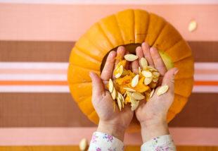 Spórold meg a dísztök árát – Így őrizd meg a halloweeni tök magját, hogy következő nyáron elvethesd